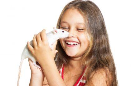 Como casi todos los sueños con animales, debe enfrentarlos para que su significado sea bueno.
