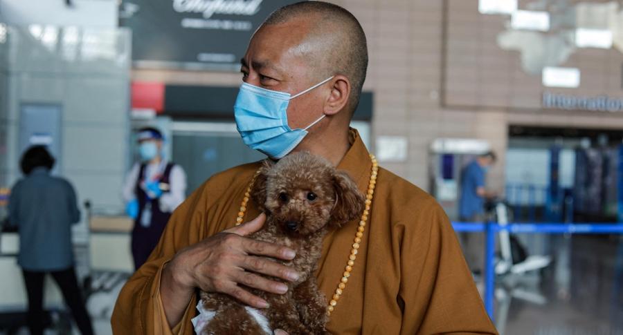 El monje Zhi Xiang acude a la perrera de Shanghái,  ciudad más grande de China, en donde la policía amontona a los perros callejeros.