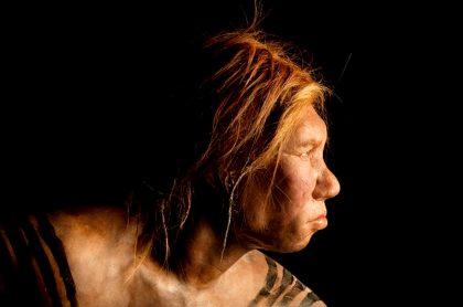 Hallan restos de un tipo de humano desconocido, de 130.000 años
