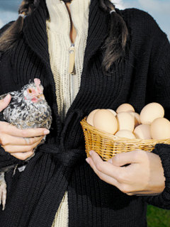Precio de los huevos sigue por las nubes y demoraría semanas en bajar
