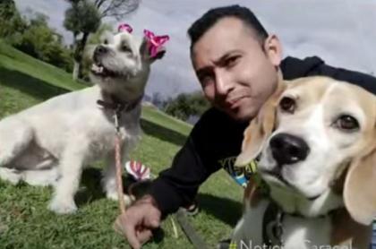 Víctima de atraco de  celular, mientras paseaba sus perros en Bogotá